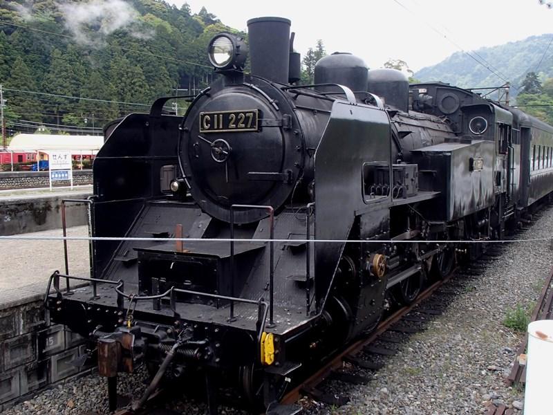P4299919s