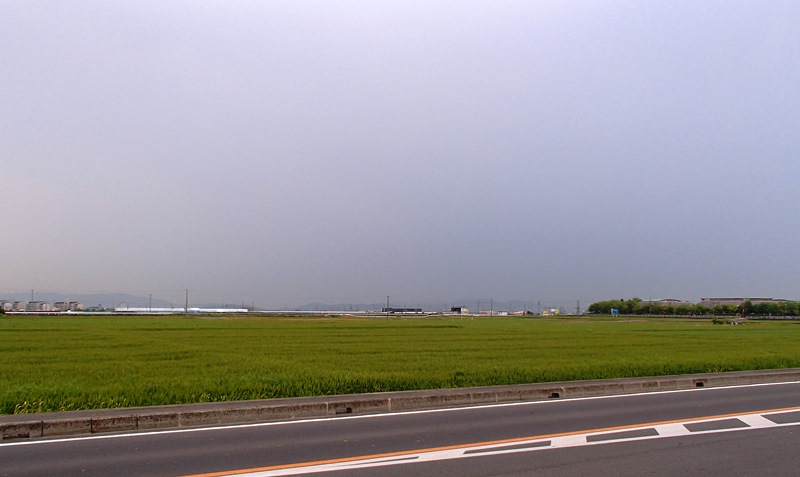 P5016128s
